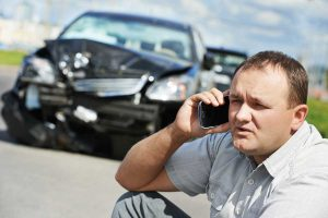 Does Car Insurance Cover Animal Damage?